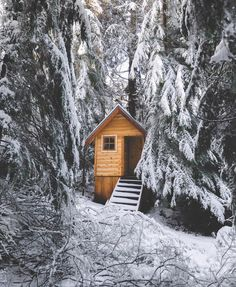 Let it snow. Cabin into snow.