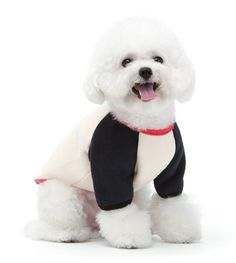 catBoBo cat Clothes for Dog Cat Puppy Winter Sweatshirt Warm Sweater Hoodie Dog Coat >>> Don't get left behind, see this great cat product : Cat sweater