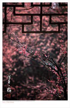 Blur Image Background, Desktop Background Pictures, Blur Background In Photoshop, Blur Background Photography, Photo Background Editor, Studio Background Images, Light Background Images, Picsart Background, Art Asiatique