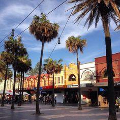 The Corso #Manly #Sydney #NSW #Australia. #palmtree #street #architecture #travel #tourism #tourist