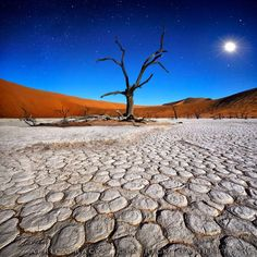 Stars In DeadVlei Photo by Patrick Galibert, Windhoek, Khomas, Namibia - National Geographic