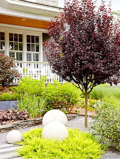 Make your yard stand out from the rest with a unique and interesting landscape plan. Browse from our gallery of lawns, yards, patio and porches that utilize unique patios, garden gates, water features and garden beds that will give you a major boost in curb appeal.