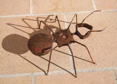 Hormiga realizada en hierro y oxidada con agua fuerte.