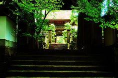 Fine Art America, Gate, Temple, Gallery, Beautiful, Portal, Temples, Buddhist Temple, Gates