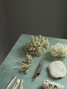 A London based Creative Consultant and Interior Stylist working in the visual direction of trend led, still life interior photography. Motifs Organiques, Color Stories, Natural World, Color Inspiration, Wedding Inspiration, Interior Styling, Still Life, Sea Shells, Stoneware