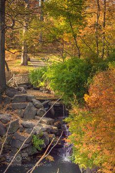 Autumn 1 by AleksandraTodorova #nature #mothernature #travel #traveling #vacation #visiting #trip #holiday #tourism #tourist #photooftheday #amazing #picoftheday