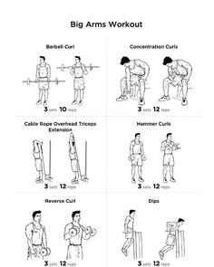 Dumbbell Workout I Poster (Chest, Biceps, Triceps
