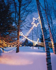 "Shooting Stars - Create a striking outdoor lighting display by wrapping wire wreath forms with white mini lights and stringing the ""shooting stars"" between several trees."