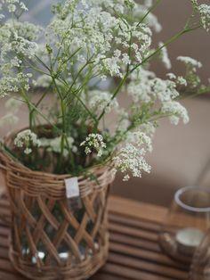Sommerens gleder – Ingrid Tunheim Flowers, Plants, Plant, Royal Icing Flowers, Flower, Florals, Floral, Planets, Blossoms