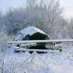 Winter #carpfishing #Richardhand.com