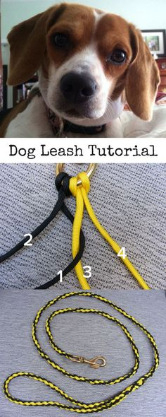 Learn step-by-step how to make a dog leash out of paracord. Well be creating a braid from two different colors of paracord. Paracord Tutorial, Luxury Dog Collars, Leather Dog Collars, Paracord Braids, How To Braid Paracord, Paracord Dog Leash, Dog Collar Boy, Diy Collier, Paracord Projects