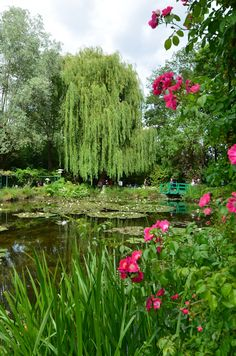 Monet's Garden, Giverny, France.      His paintings perfectly capture the scenes in Giverny.