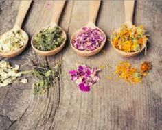 Are you struggling with your menstruation and hormones? There are solutions to eliminate pain and discomfort. Learn how to maintain your hormonal health! Banner Printing, Wooden Spoons, Herbalism, Medicine, Herbs, Skin Care, Stock Photos, Nature, Natural Products
