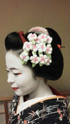 Maiko Katsuhina with snow kimono