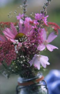 Grow a Cutting Garden - Bring your flowers inside and delight in their cheerful blooms.