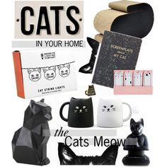Cats in your home