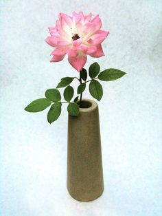 concrete bud vase Fawn Colour, Color, Bud Vases, Your Favorite, Concrete, Valentines, It Is Finished, Texture, Flowers