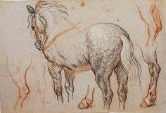 Charles de la Fosse (1636-1716) Etudes de cheval Trois crayons - 28,5 x 40,5 cm