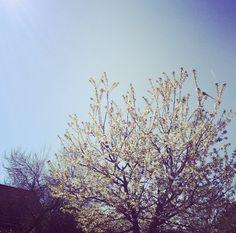 Au soleil, rien n'est plus parfait.