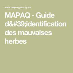 MAPAQ - Guide d'identification des mauvaises herbes