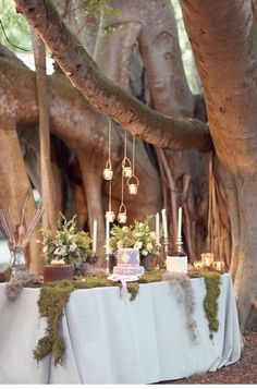 fairytale wedding reception. Enchanted Garden Wedding. The Marie Selby Botanical Gardens in Sarasota, Florida made for an absolutely magical venue for Renata and Nate to tie the knot. With lights strung from banyan trees, gorgeous florals, and a dessert table seemingly out of a fairytale forest, they created a feel of timeless romance and dreamlike allure.