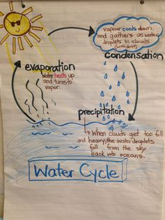 Classroom decor · preschool · water cycle, anchor chart fourth grade science, kindergarten science, middle school science, Grade 2 Science, Kindergarten Science, Elementary Science, Middle School Science, Science Classroom, Science Education, Teaching Science, Earth Science, Science Activities