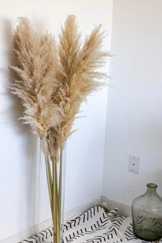 Dried Flowers Bouquet Marquee Wedding Ideas Plants Growing In Dry Areas Dried Mimosa Flowers Decor, Dried Flowers, Pampas Grass Decor, Tall Vases, Grass Decor, Vase, Plant Decor, Floor Vase, Living Decor