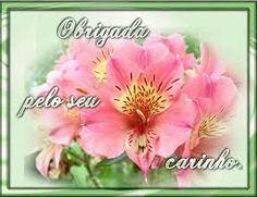 lindas pipas cor de rosa imagens - Pesquisa Google