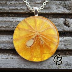 Orange Fruit Medallion  Large Round Resin Pendant by ClearBeauty, £19.99