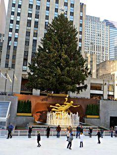 Rockefeller Center, New York City. December 4, 2015.