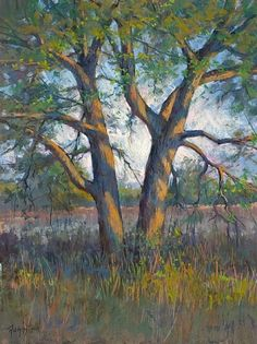 Afternoon Trees by Robert Rohm Pastel ~ 24 x 18