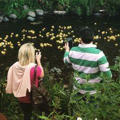 #duckrace #yellowducks #waterofleith #weekend #duck #race #fun #stockbridgeduckrace #stockbridgeduckrace2015 #stockbridge #edinburgh #stockbridgeedinburgh #scotland