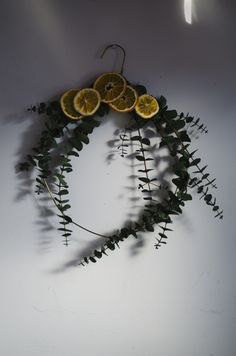 Best No Cost dried Eucalyptus Wreath Popular That DIY eucalyptus wreath is an ideal basic wreath for the time of year or maybe décor type plus w Natural Christmas, Noel Christmas, Christmas Wreaths, Yule Decorations, Decoration Christmas, Dried Eucalyptus, Eucalyptus Wreath, Diy Décoration, Diy Crafts