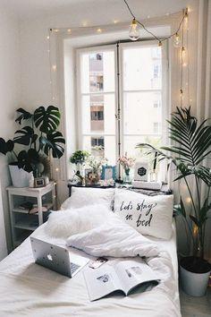 Floor Plants - 30 Hacks To Ace Your Dorm Room - Photos