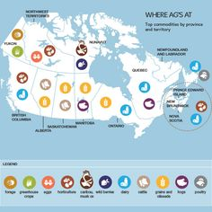 Top agricultural commodities by Canadian province and territory. Canadian Culture, Canadian Food, Canadian History, Agriculture Facts, Ontario, All About Canada, Secondary Resources, Northwest Territories, Newfoundland And Labrador