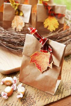 With a simple brown paper bag, some leaves and fabric you can make this cute treat bag. Could use for Thanksgiving gifts. Wrapping Gift, Wrapping Ideas, Harvest Party, Fall Harvest, Thanksgiving Crafts, Holiday Crafts, Autumn Crafts, Fall Gifts, Pretty Packaging