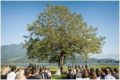 Wedding Ceremony - Rowenas Inn on the River Wedding Harrison BC Hayley Rae Photography