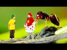 Green Balloon Club - Minibeast madness song - Cbeebies - YouTube