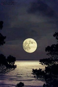 Linda luna.