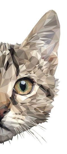 18 Super Ideas For Cats Painting Ideas Gatos Cat Face, Belle Photo, Cool Art, Art Photography, Illustration Art, Illustration Pictures, Art Illustrations, Digital Art, Digital Portrait
