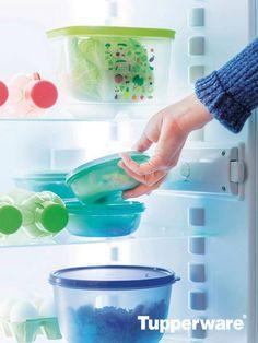 Tupperware te da una gran variedad de recipientes especiales para refri. ¿Cuál es tu favorito?