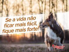 Se a vida não ficar mais fácil, fique mais forte!  #Venca #SejaForte