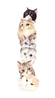 Cat Phone Wallpaper, Cat Pattern Wallpaper, Cute Cat Wallpaper, Kittens Cutest, Cute Cats, Chibi Cat, Cute Animal Drawings, Fluffy Cat, Cute Cartoon Wallpapers