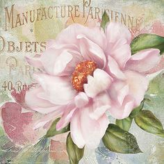 Bring the charm and romance of old Paris to any room with the retro-inspired Parfum de Paris II Canvas Wall Art. This beautiful canvas print features inviting colors and an appealing take on vintage French perfume label design. Canvas Wall Art, Canvas Prints, Art Prints, Vintage Flowers, Pink Flowers, Art Decor, Decoration, Room Decor, Parfum Paris