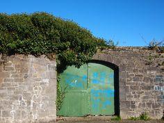 Graffiti and Door
