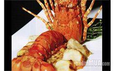 NHÀ HÀNG SEAFOOD ONE (HN) - Nhà hàng hải sản lớn nhất Việt Nam chỉ với 250.000 VNĐ, giảm 41%