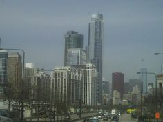 The trip to the Zoo#6 Lincoln Park Zoo Chicago, New York Skyline, Skyscraper, Building, Travel, Skyscrapers, Viajes, Buildings, Destinations