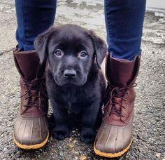Let's Go I'm Ready For Hiking.. http://ift.tt/2jJJe6U