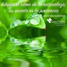 NO TENGAS PRISA, DISFRUTA DEL CAMINO... (((Sesiones y Cursos Online www.ciaramolina.com #psicologia #emociones #salud)))