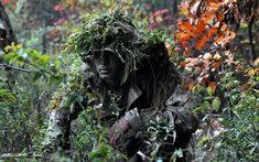 Camouflage and Concealment: The Art of Staying Hidden